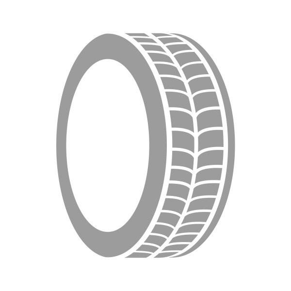 Set Reifen (4 Stk.) Dunlop RT